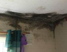 Condensation Related Damp